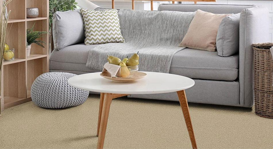 Living room beige carpet