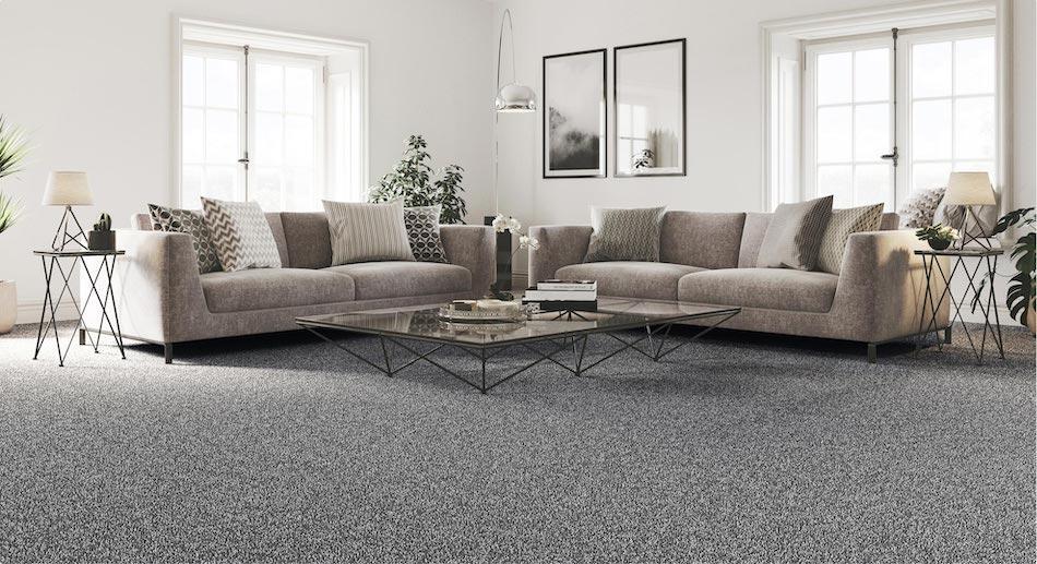 living room black carpet