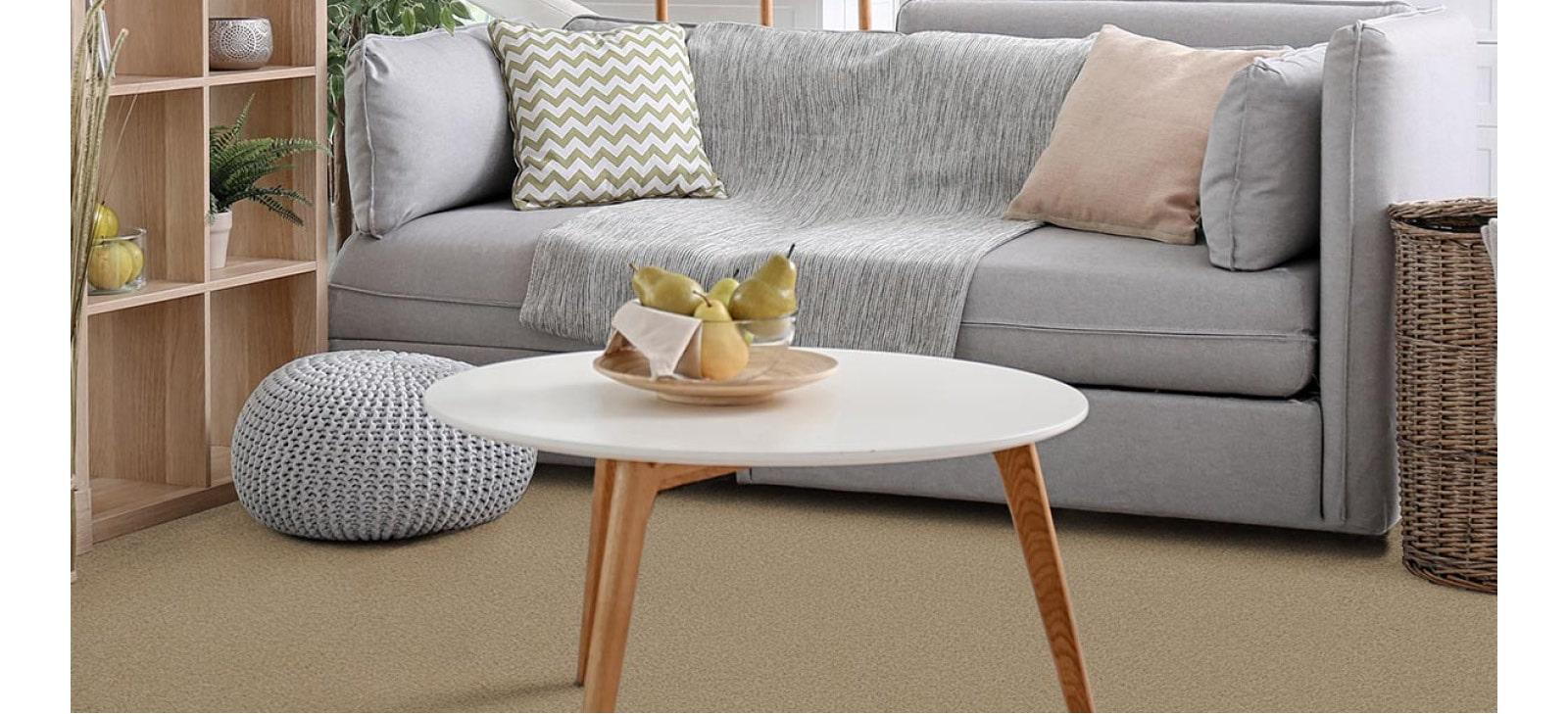 Lounge Roomset with Beige Carpet