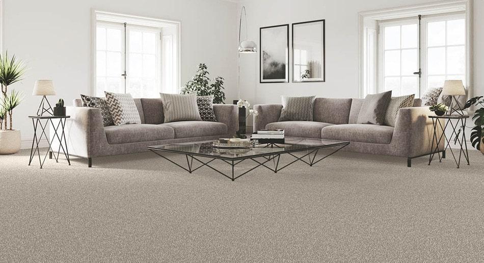 Neutral carpet living room
