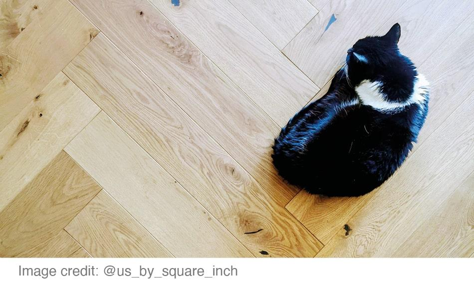 Picking The Perfect Pet Proof Flooring, What Is The Best Laminate Flooring For Pets