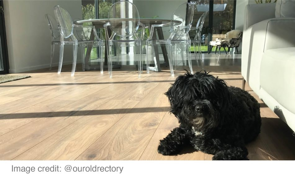 What Is The Best Conservatory Flooring, Best Vinyl Flooring For Dogs Uk