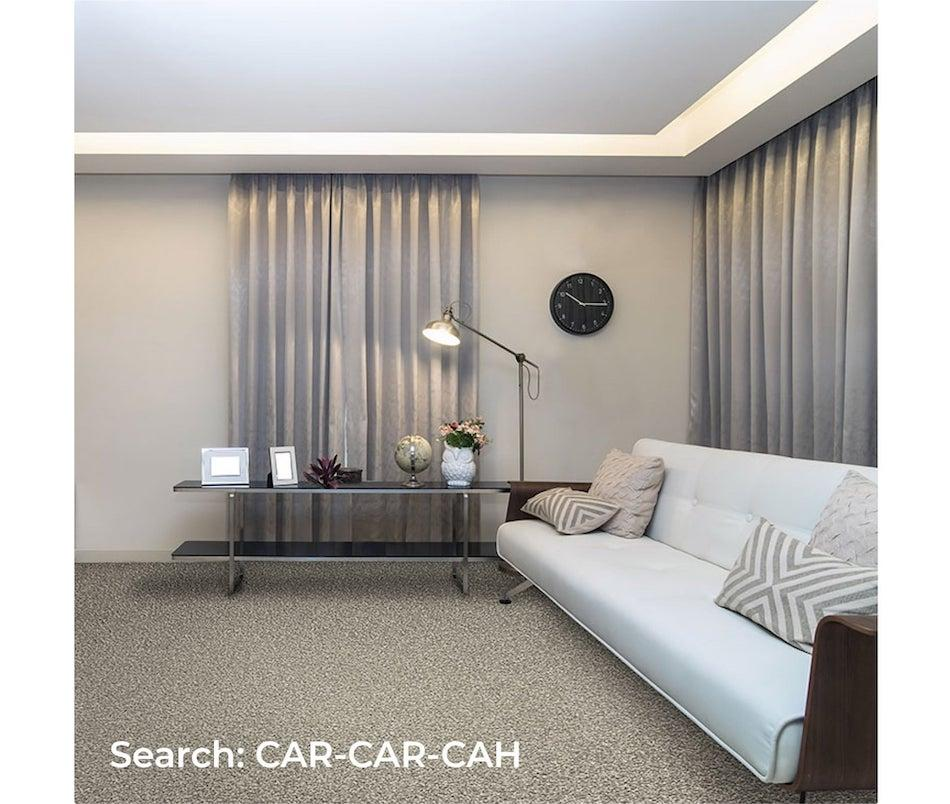 living room with cream carpet